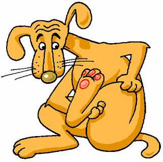 A kutya meg a nyúl (Benedek Elek)