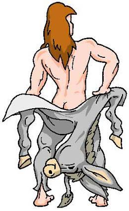 Szamárbőr királyfi II. rész (széki népmese)